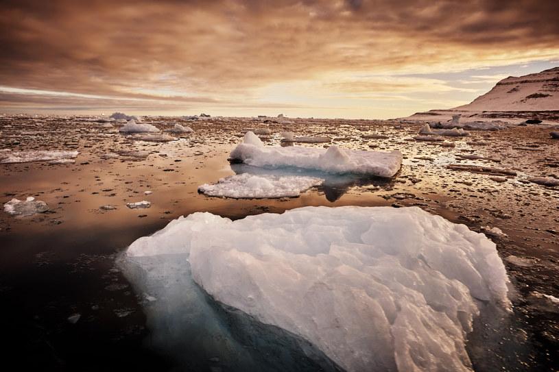 Czy na Grenlandii zabraknie kiedyś lodu? /123RF/PICSEL