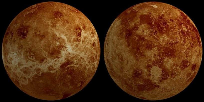 Czy na Wenus istnieje życie? Naukowcy nie są tego pewni /NASA