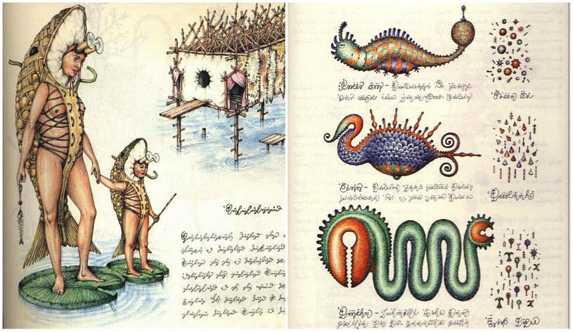 Czy nad niezwykle skomplikowanym Codexem Serafini pracował samemu? /materiały prasowe