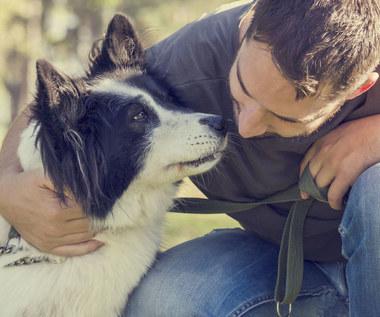 Czy najlepszy przyjaciel człowieka może zdiagnozować raka?