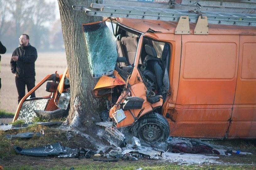 Czy należy wycinać przydrożne drzewa? /Hubert Bierndgarski /Reporter