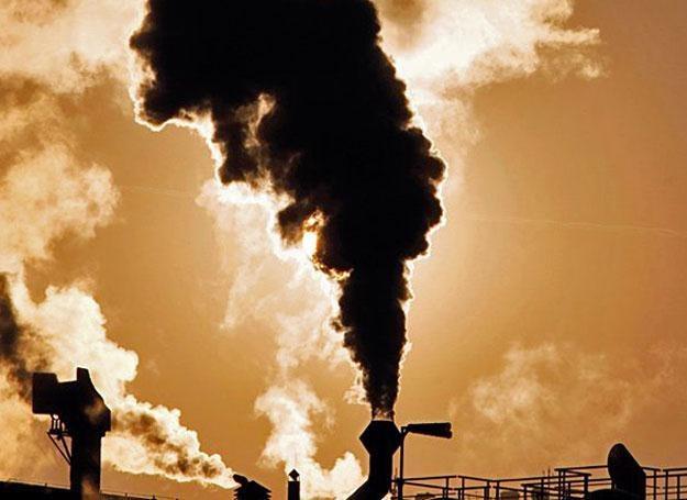 Czy nasze opinie o zanieczyszczeniu powietrza też zależą od temperatury? /Kopalnia Wiedzy