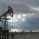 Czy odkrycie nowych złóż ropy doprowadzi do obniżki cen?