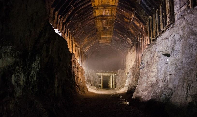 Czy pod zamkiem Czocha znajdują się takie tunele jak w Ossówce? /East News