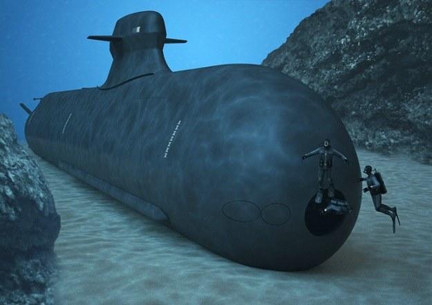 Czy Polska przystąpi do spółki, czy kupi okręty podwodne samodzielnie? /INTERIA.PL/materiały prasowe