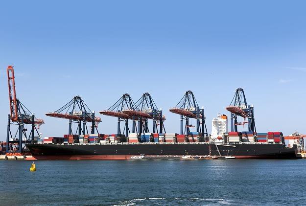 Czy polskie porty mogą konkurować z najlepszymi? /©123RF/PICSEL