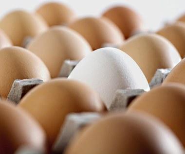 Czy powinno się przechowywać jajka w lodówce?