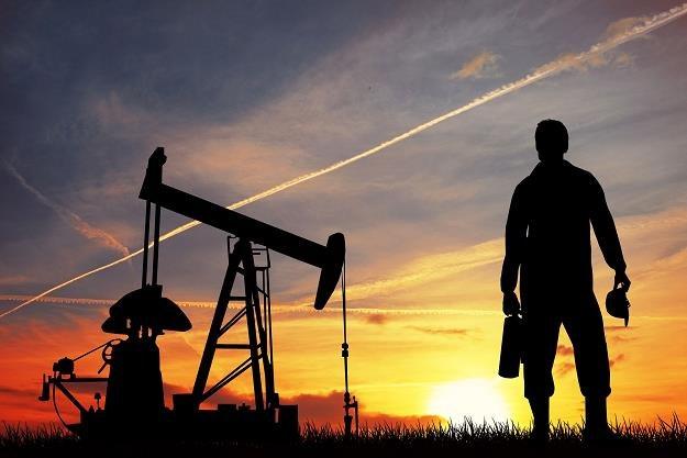 Czy Rosja dogada się z krajami OPEC? /©123RF/PICSEL