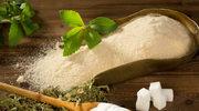 Czy stewia może zastąpić cukier?