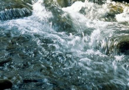 Czy ta inwestycja oznacza koniec ze źródłami wód mineralnych w Krynicy? /© Bauer