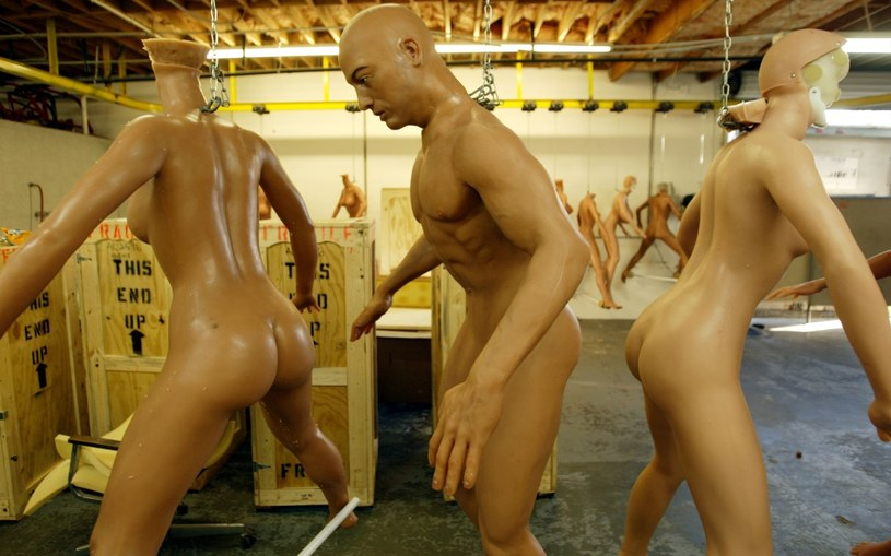 Czy tak będą wyglądać fabryki seks-robotów przyszłości? /Getty Images