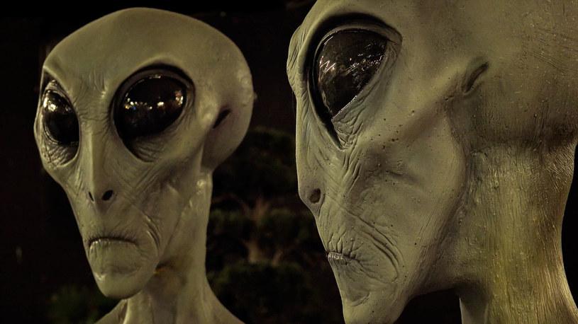 Czy taka wizja pozaziemskiego przybysza kiedykolwiek się sprawdzi? /123RF/PICSEL