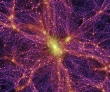 Czy to cząstki Majorany tworzą ciemną materię?