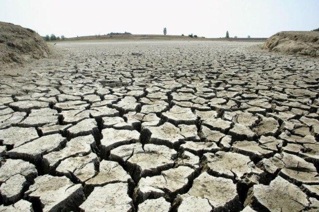 Czy to globalne ocieplenie jest sprawcą wzrostu temperatury? NASA twierdzi, że tak /AFP