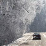 Czy to już ostatni atak zimy? Sprawdź prognozę!