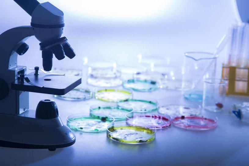 Czy to możliwe by wirus HIV w końcu stał się przeszłością? /123RF/PICSEL