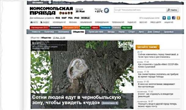 Czy to prawdziwy cud w strefie czarnobylskiej? /INTERIA.PL