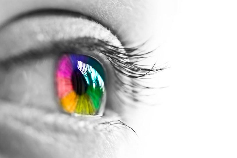 Czy trening plamki ślepej może pomóc w opracowaniu innowacyjnych metod przywrcania wzroku? /123RF/PICSEL