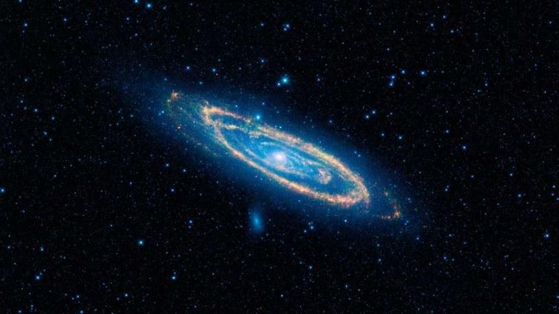 Czy w galaktyce Andromedy faktycznie ukrywa się życie? /NASA