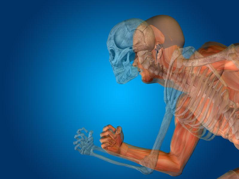 Czy w końcu uda się opracować funkcjonalne sztuczne mięśnie? /123RF/PICSEL