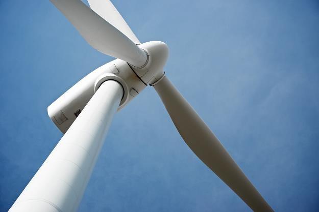 Czy w Polsce nastąpi wysyp używanych wiatraków z zagranicy? /©123RF/PICSEL