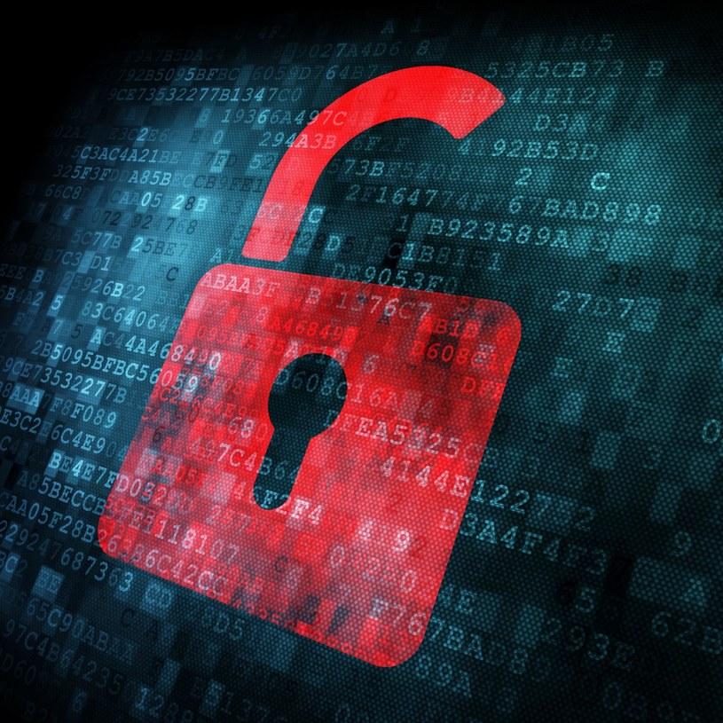 Czy w Polsce powstanie instytucja do walki z cyberprzestępczością? /123RF/PICSEL