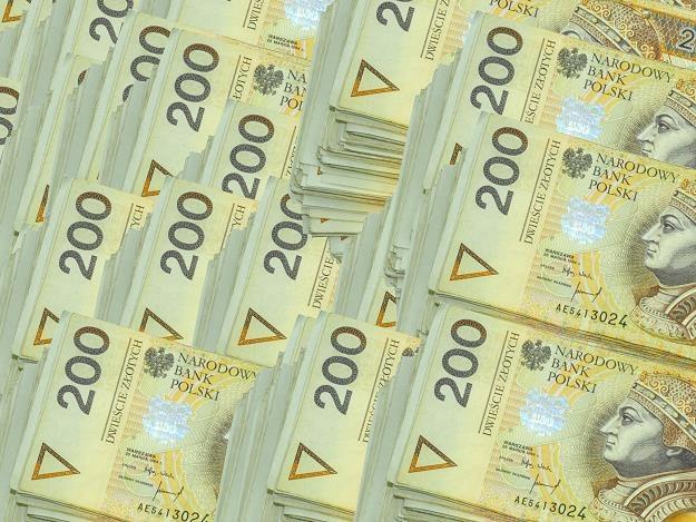 Czy warto trzymać dużo gotówki? /©123RF/PICSEL