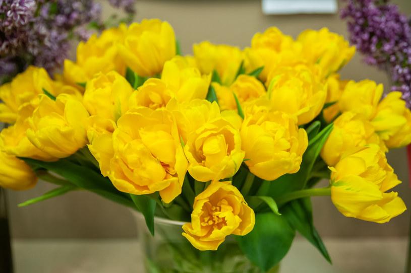 Czy wiesz, co zrobić, by kwiaty w wazonie stały jak najdłużej? /123RF/PICSEL