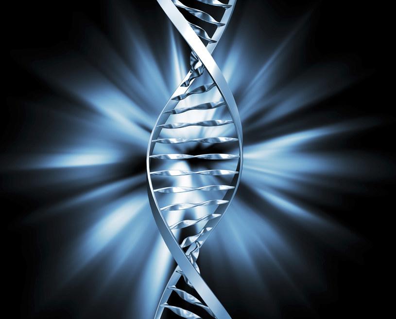Czy wkrótce technika CRISPR pomoże nam wyleczyć choroby neurodegeneracyjne? /© Glowimages