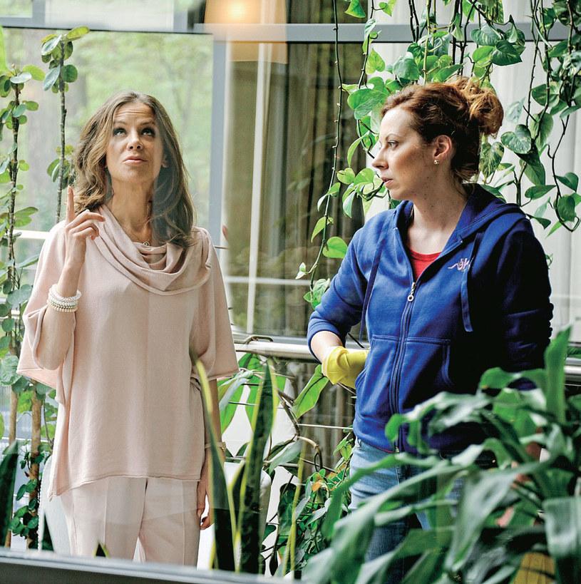 Czy wyniosła choć zakompleksiona pani Puderkowa (Natalia Lesz) nauczy się szanować pracującą u niej dziewczynę ze Lwowa, Swietę (Anna Maria Buczek)? /Tele Tydzień