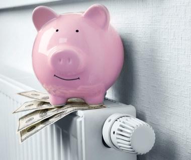 Czy wzrost cen prądu to efekt manipulacji na giełdzie?