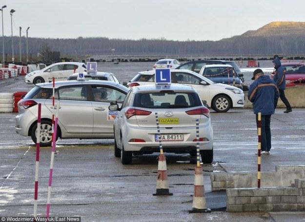 Czy za kurs nauki jazdy powinna być jedna cena? /Włodzimierz Wasyluk /East News