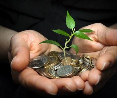 Czy zapłaciłbyś więcej za zielone?