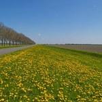 Czy zbycie nieruchomości rolnej będzie łatwiejsze?