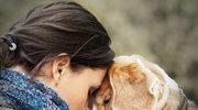 Czy zwierzęta domowe mogą obdarzać miłością?