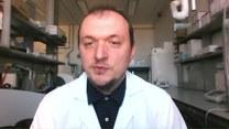 Czy zwierzęta przenoszą koronawirusa?