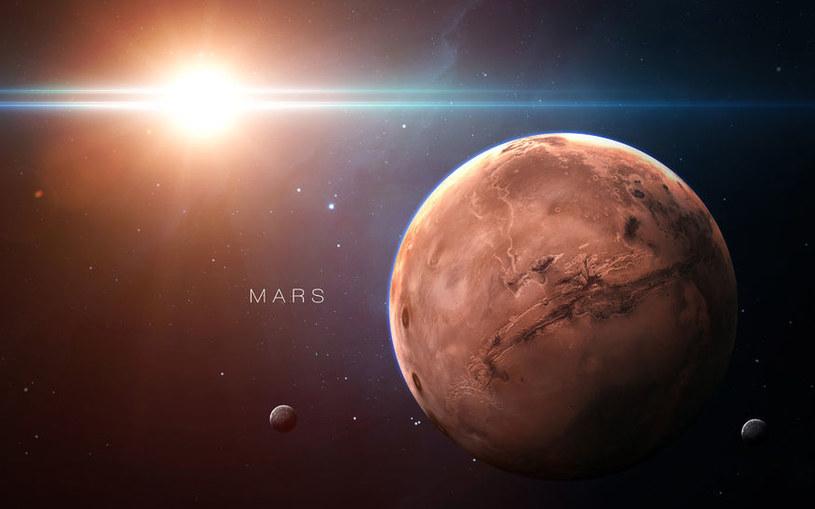 Czy życie mogło się narodzić najpierw na Marsie, a dopiero później przybyć na Ziemię? /123RF/PICSEL