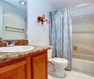 Czym czyścić zasłonę prysznicową?