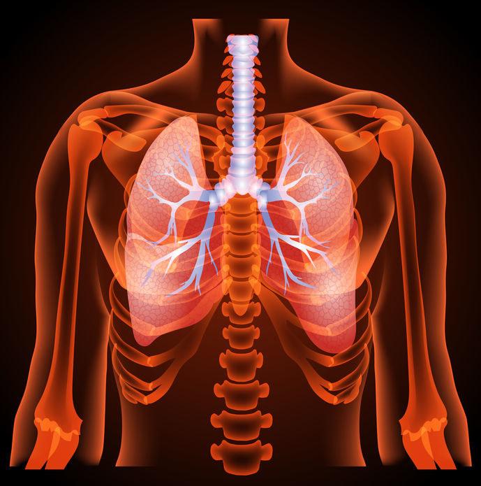Czym jest idiopatyczne włóknienie płuc? /©123RF/PICSEL