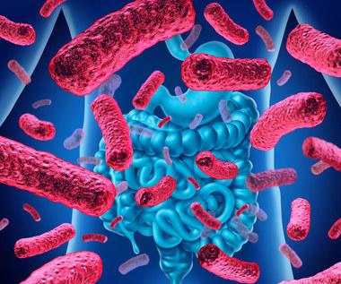 Czym jest mikrobiom i jakie pełni funkcje?
