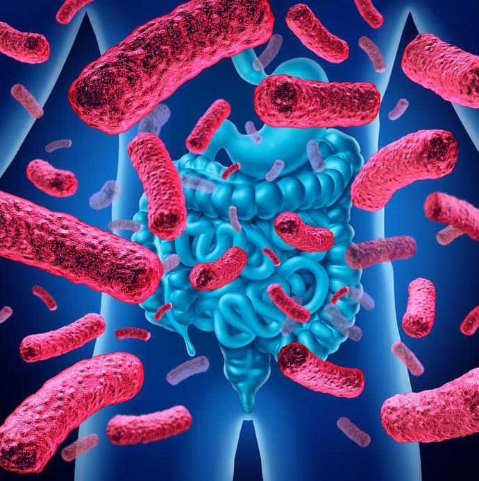 Czym jest mikrobiom i za co odpowiada? /©123RF/PICSEL