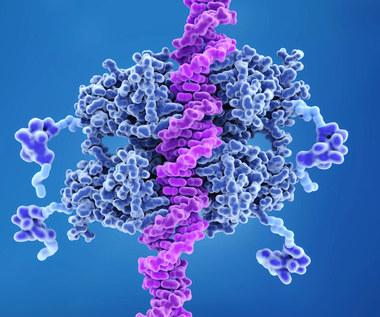 Czym jest mutacja nowotworowa?