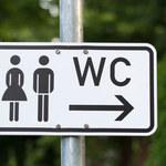 Czym można się zarazić w publicznej toalecie?