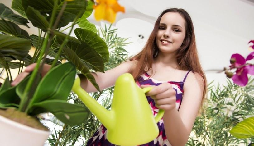 Czym najlepiej podlewać kwiaty? /©123RF/PICSEL