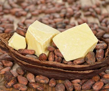 Czym różni się masło kakaowe od kakao?