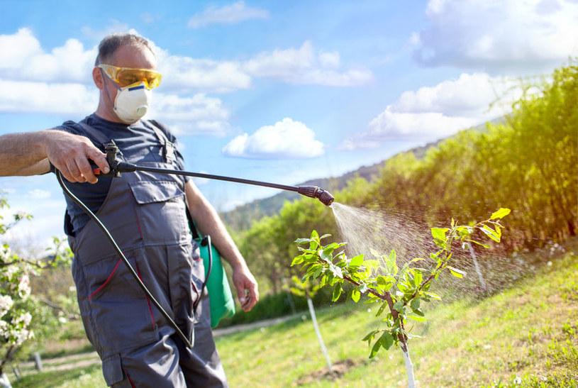 Czym są pestycydy? /©123RF/PICSEL