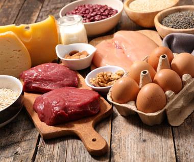 Czym zastąpić białko pochodzenia zwierzęcego?