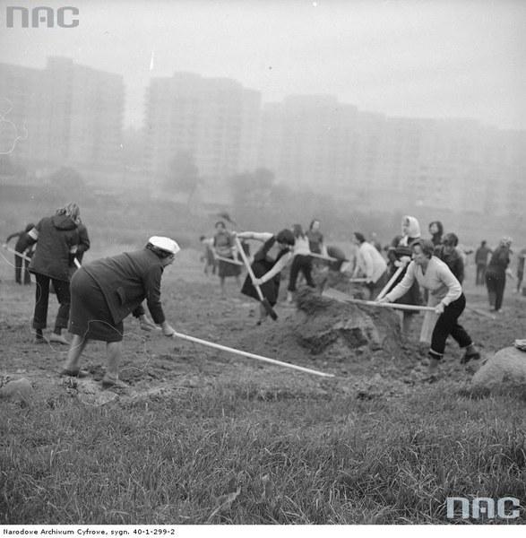 Czyn partyjny, plantowanie terenu, 1979