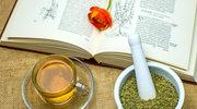 Czystek – czysta prawda o ziołach