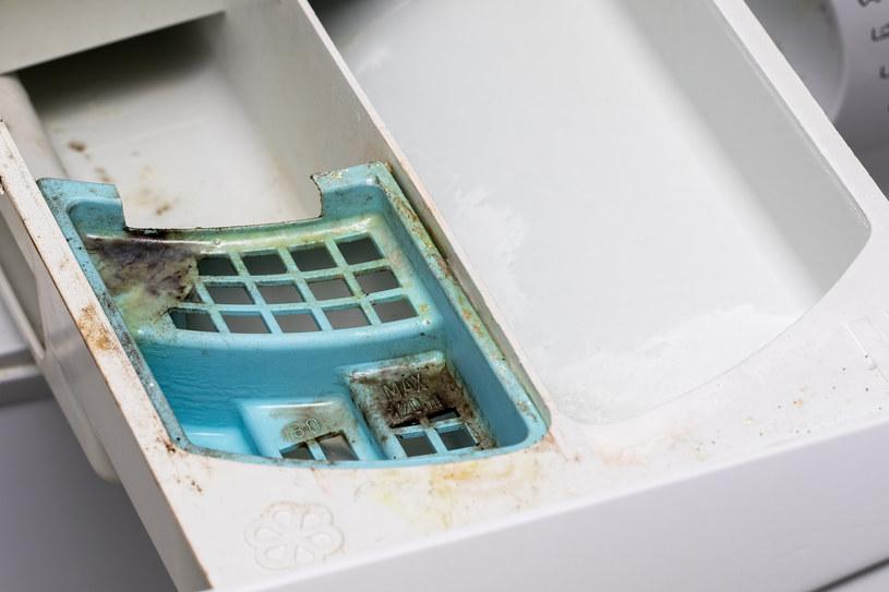 Czyszczenie szuflady w pralce może być łatwiejsze niż sądzisz /123RF/PICSEL